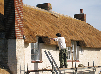 RJ Matravers Assessing Thatch condition