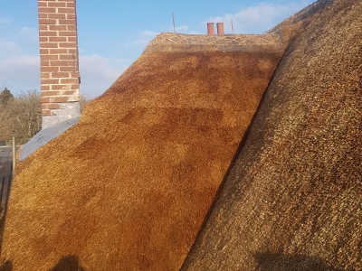 RJ Matravers Thatched roof with chimney